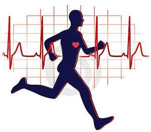 اموزشی تربیت بدنی خلاصه متون  کاربردی برای شرکت در ازمون های استخدامی