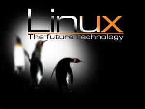 اموزش نصب لینوکس لینوکس linux نصب linux پارتیشن بندی تعریف لینوکس توضیحاتی درباره لینوکس لینوکس چیست دانلود دانلود مقاله دانلود تحقیق دانلود پایان نامه