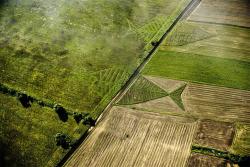 تعیین مرز لهستان  مرز لهستان  معاهده برست  دفاع از مرزهای شرق